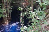 Analiza FQ contaminantes en acuífero de Yucatán