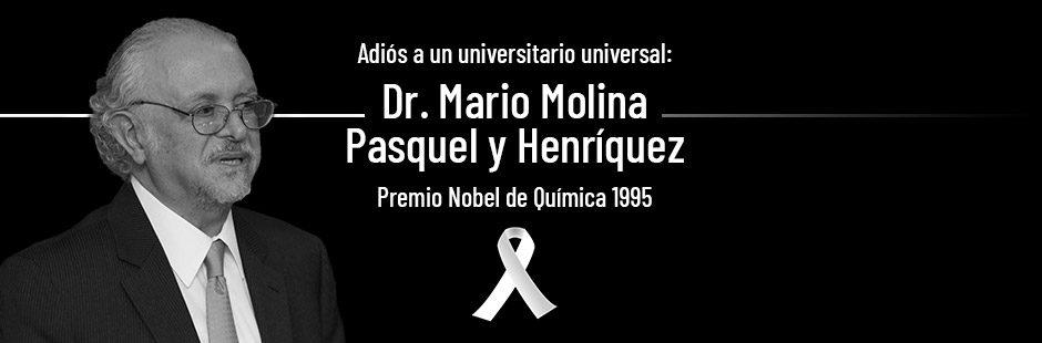 Banner Mario Molina